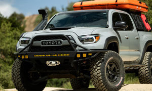 Toyota Tacoma with Fuel Warp – D733 Wheels